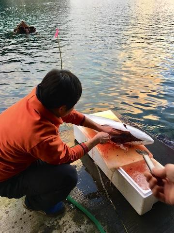 http://www.chinzao.com/blog/7c5f7eb1-11be-4af2-98a0-c89afd474a01.JPG